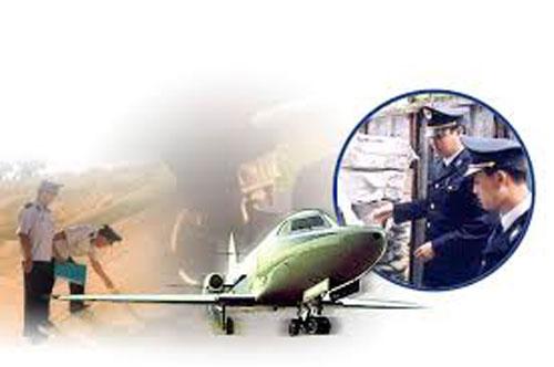 Dịch vụ hải quan, khai thuê hải quan